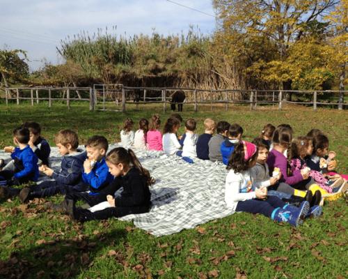 bambini-scuole-fattoria-merenda-giocano-attività-aperto-animagricola