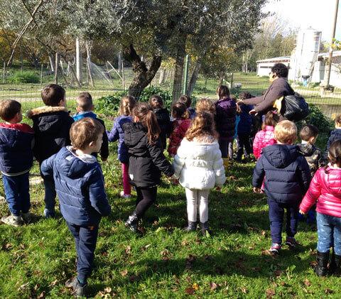 bambini-scuole-fattoria-didattica-asineria-animagricola