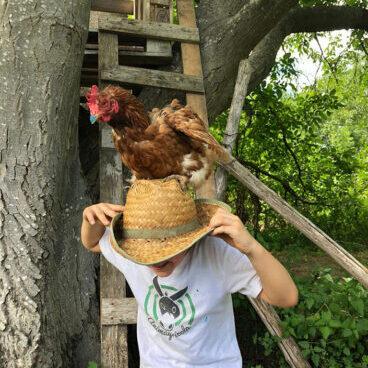 bambino-e-gallina-pomeriggi-in-fattoria-animagricola