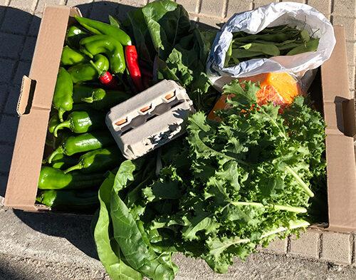 casetta di frutta e verdura
